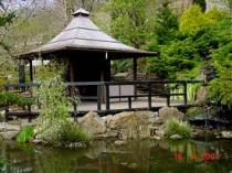 The Japanese Garden & Bonsai Nursery, Newquay
