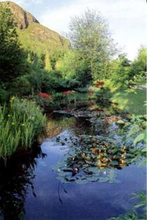 Attadale Gardens, Ross-shire
